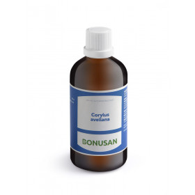 Corylus avellana - 100 ml