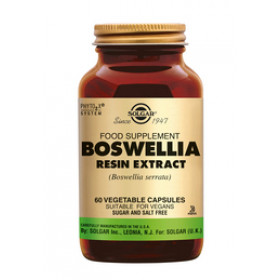 Boswellia Resin Extract - 60 caps